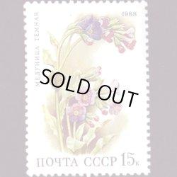 画像1: ロシアの切手 1988年花15K