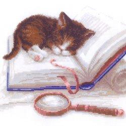 画像1: クロスステッチ キット (RIOLIS・リオリス・1725) 本の上の子猫