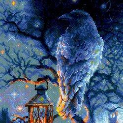 画像1: クロスステッチ キット 賢いカラス (RIOLIS・リオリス・1876) Wise Raven