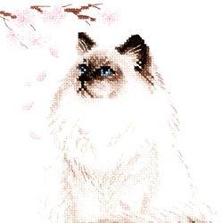 画像1: クロスステッチキット Meow-Zen 猫と桜 禅 (RIOLIS・リオリス・1878)