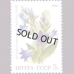 画像1: ロシアの切手 1988年花5K