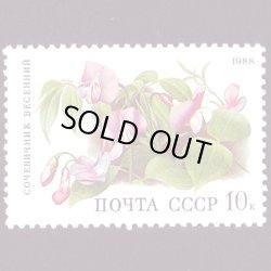 画像1: ロシアの切手 1988年花10K