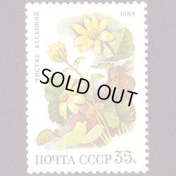 画像1: ロシアの切手 1988年花35K