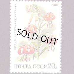 画像1: ロシアの切手 1988年花20K